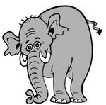 olifant.thumbnail